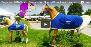 2016 Breyerfest Video