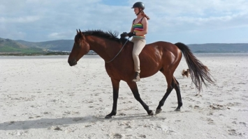 Riding Ex Racehorse Tackless On Beach VIDEO