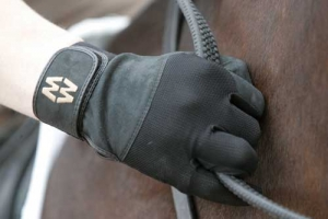 Horse Riding and Work Gloves