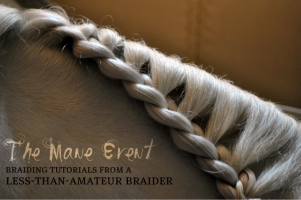 Horse Braid Types