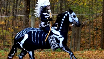 Celebrate Halloween with Your Horse