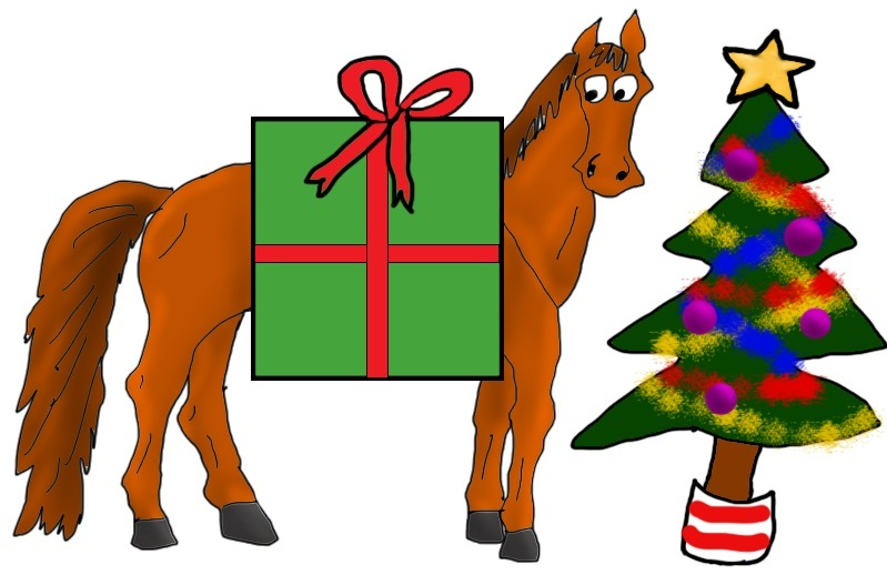 What Your Riding Instructor Wants For Christmas