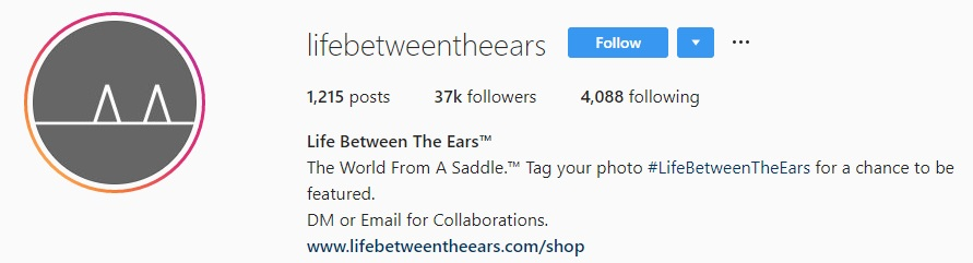 lifebetweentheears