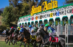 Another Santa Anita Breakdown