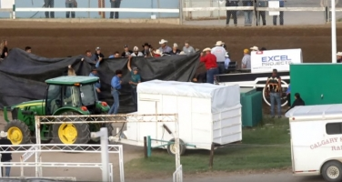 Chuckwagon Racing Under Review