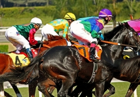 More Horses Die Over Weekend At Santa Anita