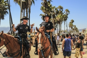 Horse Patrol Used In Covid Enforcement