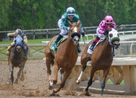 Kentucky Derby Horse Drugging Probe Ongoing