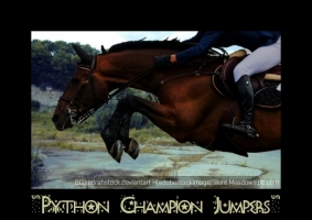 PythonPonyPalaces STANDBR Breeds another Top Horse on PonyBox