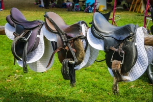 10 Awesome Equestrian Hacks For Tack and Horse
