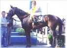 Was the Greatest Racehorse a Gelding