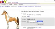 Ponyads.com Horse Domain Name for Sale
